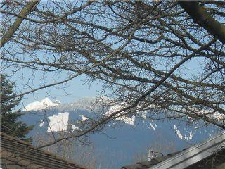 Photo 16: 2880 GRANT Street in Vancouver: Renfrew VE House for sale (Vancouver East)  : MLS®# V1055300
