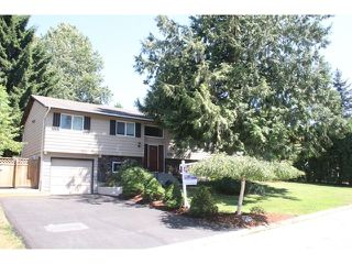 """Photo 1: 4794 206A Street in Langley: Langley City House for sale in """"City Park"""" : MLS®# F1445870"""