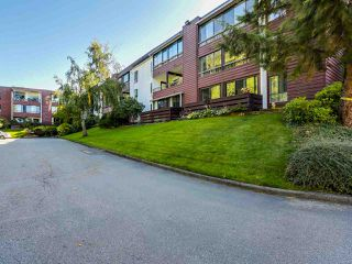 "Photo 14: 313 8760 NO 1 Road in Richmond: Boyd Park Condo for sale in ""APPLE GREENE"" : MLS®# R2004968"