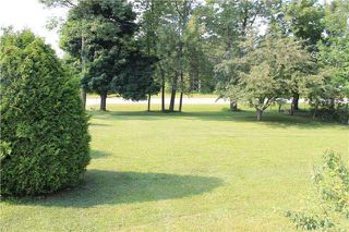 Photo 11: 964 Portage Road in Kawartha Lakes: Kirkfield House (Bungalow-Raised) for sale : MLS®# X3357022