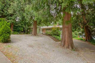 Photo 20: R2072167 - 2963 Spuraway Ave, Coquitlam For Sale
