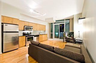 Photo 1: 269 209 Fort York Boulevard in Toronto: Waterfront Communities C1 Condo for sale (Toronto C01)  : MLS®# C3506894