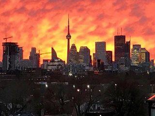 Photo 18: Ph 722 88 Colgate Avenue in Toronto: South Riverdale Condo for sale (Toronto E01)  : MLS®# E4005816