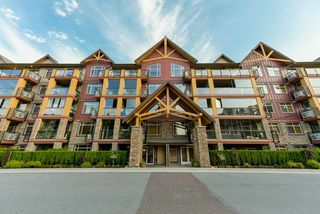 """Main Photo: 322 8288 207A Street in Langley: Willoughby Heights Condo for sale in """"Yorkson Creek"""" : MLS®# R2277552"""