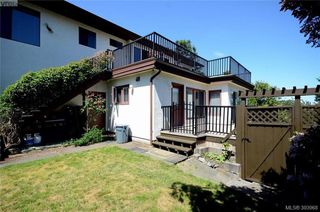 Photo 18: 913 Nicholson St in VICTORIA: SE High Quadra Single Family Detached for sale (Saanich East)  : MLS®# 789694