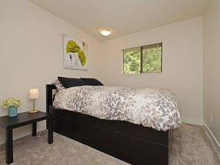 Photo 11: 1979 WADDELL Avenue in Port Coquitlam: Lower Mary Hill House for sale : MLS®# R2301376