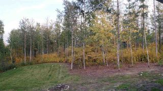 Photo 25: 119 54406 Range Road 15: Rural Lac Ste. Anne County House for sale : MLS®# E4132259