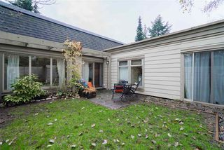 """Photo 14: 7207 CELISTA Drive in Vancouver: Champlain Heights Townhouse for sale in """"Meadows"""" (Vancouver East)  : MLS®# R2337441"""