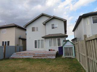 Photo 28: 217 MACEWAN Road in Edmonton: Zone 55 House for sale : MLS®# E4142562