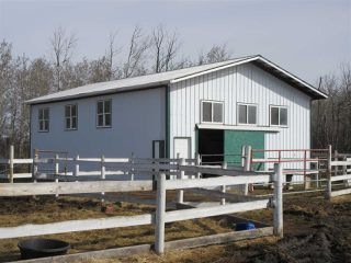 Photo 24: 58016 RR 223: Rural Thorhild County House for sale : MLS®# E4142890