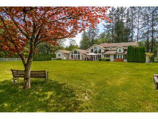 Photo 18: 18907 80 Avenue in Surrey: Port Kells House for sale (North Surrey)  : MLS®# R2367640