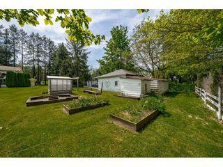 Photo 20: 18907 80 Avenue in Surrey: Port Kells House for sale (North Surrey)  : MLS®# R2367640