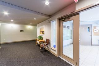 """Photo 24: 401 5765 GLOVER Road in Langley: Langley City Condo for sale in """"College Court"""" : MLS®# R2493254"""