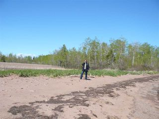 Photo 5: Lot 3 South Shore Road in Malagash: 103-Malagash, Wentworth Vacant Land for sale (Northern Region)  : MLS®# 202018772