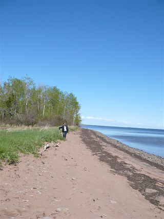 Photo 6: Lot 3 South Shore Road in Malagash: 103-Malagash, Wentworth Vacant Land for sale (Northern Region)  : MLS®# 202018772