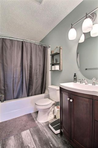 Photo 20: 164 FOXHAVEN Place: Sherwood Park House for sale : MLS®# E4218509
