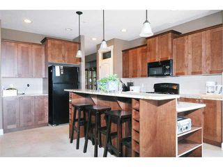 Photo 4: 10653 JACKSON Road in Maple Ridge: Albion House for sale : MLS®# V897957