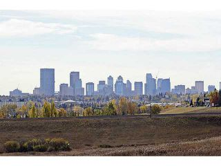 Photo 18: 10 BLACKTHORN Place NE in CALGARY: Thorncliffe Residential Detached Single Family for sale (Calgary)  : MLS®# C3591166