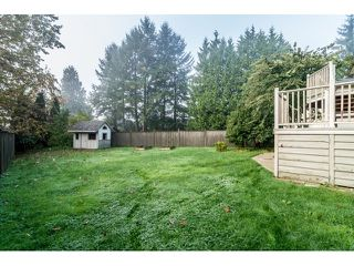 Photo 18: 3010 REECE Avenue in Coquitlam: Meadow Brook House for sale : MLS®# V1091860