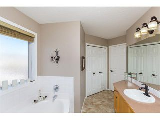 Photo 15: 449 ELGIN Way SE in Calgary: McKenzie Towne Residential Detached Single Family for sale : MLS®# C3653547