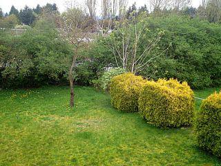 Photo 20: 33145 CAPRI Court in Abbotsford: Poplar House for sale : MLS®# F1436154