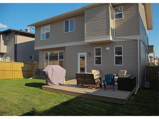 Photo 37: 185 Rainbow Falls Glen: Chestermere House for sale : MLS®# C4017404