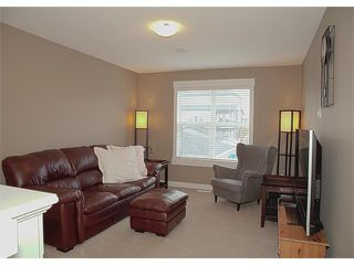 Photo 30: 185 Rainbow Falls Glen: Chestermere House for sale : MLS®# C4017404
