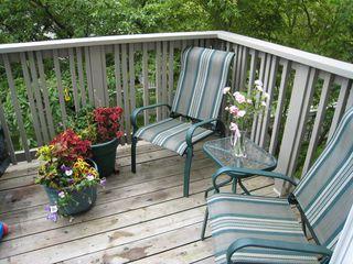 Photo 6: 94 3880 Westminster Hwy in Mayflower: Terra Nova Home for sale ()