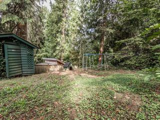Photo 17: 428 E 19TH Street in North Vancouver: Central Lonsdale House for sale : MLS®# R2001012