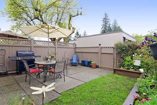 Photo 11: 3383 SEFTON Street in Port Coquitlam: Glenwood PQ Townhouse for sale : MLS®# R2055895