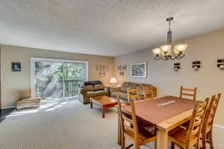 "Photo 6: 335A EVERGREEN Drive in Port Moody: College Park PM Townhouse for sale in ""EVERGREENS"" : MLS®# R2064063"