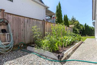 """Photo 5: 5199 219A Street in Langley: Murrayville House for sale in """"MURRAYVILLE"""" : MLS®# R2086468"""