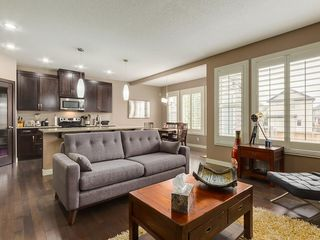 Photo 10: 64 COPPERPOND Mews SE in Calgary: Copperfield House for sale : MLS®# C4141274