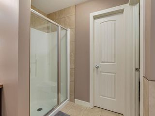 Photo 25: 64 COPPERPOND Mews SE in Calgary: Copperfield House for sale : MLS®# C4141274