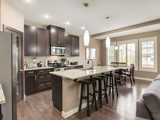 Photo 2: 64 COPPERPOND Mews SE in Calgary: Copperfield House for sale : MLS®# C4141274