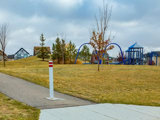 Photo 41: 64 COPPERPOND Mews SE in Calgary: Copperfield House for sale : MLS®# C4141274