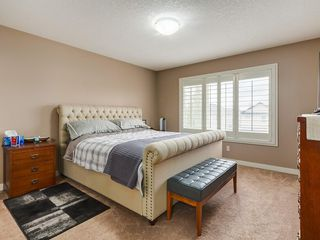 Photo 20: 64 COPPERPOND Mews SE in Calgary: Copperfield House for sale : MLS®# C4141274
