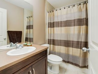 Photo 28: 64 COPPERPOND Mews SE in Calgary: Copperfield House for sale : MLS®# C4141274