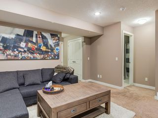 Photo 31: 64 COPPERPOND Mews SE in Calgary: Copperfield House for sale : MLS®# C4141274