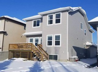 Photo 20: 4 SELKIRK Place: Leduc House for sale : MLS®# E4143237