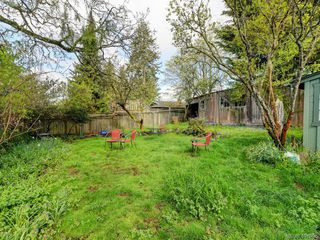Photo 19: 4034 Zinnia Road in VICTORIA: SW Marigold Single Family Detached for sale (Saanich West)  : MLS®# 407996