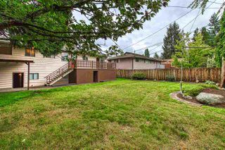 "Photo 19: 11015 SWAN Crescent in Surrey: Bolivar Heights House for sale in ""Birdland Meadows"" (North Surrey)  : MLS®# R2405174"
