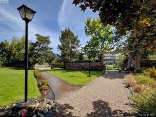 Photo 17: 320 1870 McKenzie Avenue in VICTORIA: SE Lambrick Park Condo Apartment for sale (Saanich East)  : MLS®# 417199