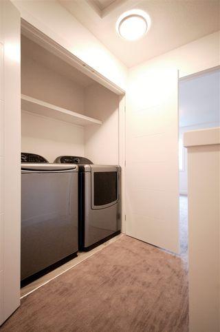 Photo 11: 9323 93 Street NW in Edmonton: Zone 18 House Triplex for sale : MLS®# E4202540