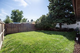 Photo 28: 108 Pensacola Close SE in Calgary: Penbrooke Meadows Detached for sale : MLS®# A1028288