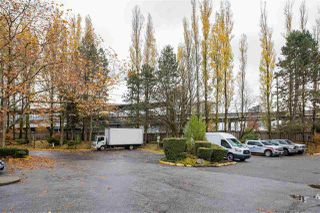 "Photo 32: 310 9847 MANCHESTER Drive in Burnaby: Cariboo Condo for sale in ""BARCLAY WOODS"" (Burnaby North)  : MLS®# R2518337"