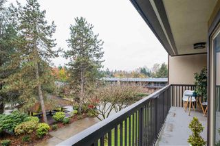 "Photo 10: 310 9847 MANCHESTER Drive in Burnaby: Cariboo Condo for sale in ""BARCLAY WOODS"" (Burnaby North)  : MLS®# R2518337"