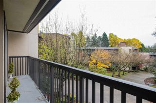 "Photo 12: 310 9847 MANCHESTER Drive in Burnaby: Cariboo Condo for sale in ""BARCLAY WOODS"" (Burnaby North)  : MLS®# R2518337"