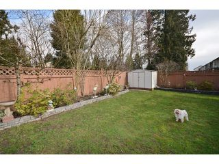 "Photo 20: 1450 RHINE Crescent in Port Coquitlam: Riverwood House for sale in ""RIVERWOOD"" : MLS®# V1052007"