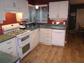 Photo 6: 23796 110B Avenue in Maple Ridge: Cottonwood MR House for sale : MLS®# R2019785